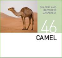 Корм для верблюдов CAMEL