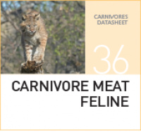 Корм для плотоядных кошек Carnivore Meat Feline