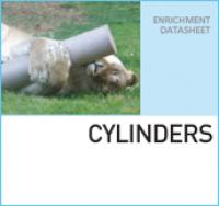 Игровые цилиндры CYLINDERS