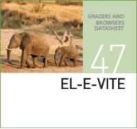 Специализированный корм для слонов EL-E-VITE