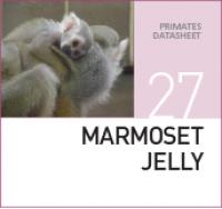 Желе для Мартышек Marmoset Jelly