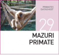Корм для обезьян Mazuri Primate