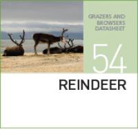 Корм для оленей REINDEER