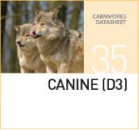 Корм для диких собак Canine (D3)