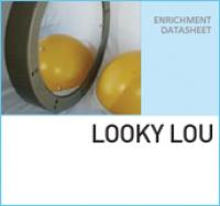 Интерактивное зеркало LOOKY LOU
