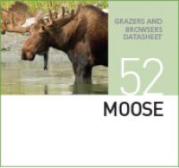 Корм для лосей MOOZE