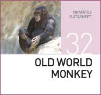 Корм для старых обезьян Old World Monkey