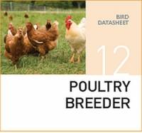 Корм для разведения домашней птицы Poultry breeder