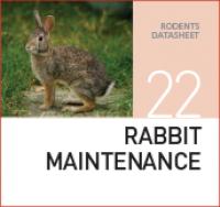 Корм для содержания кроликов Rabbit maintenance