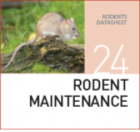 Корм для содержания крыс и мышей Rodent maintenance