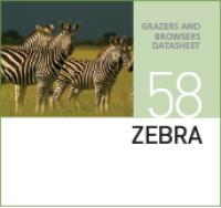 Корм для зебр ZEBRA