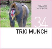 Корм для обезьян Trio Munch